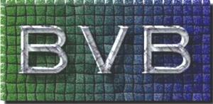 bvb logo lite